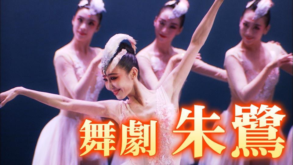 舞劇「朱鷺」 朱鷺と青年の時空を超えた愛の物語