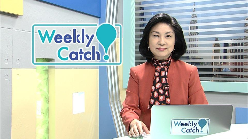 11月15日 Weekly Catch!