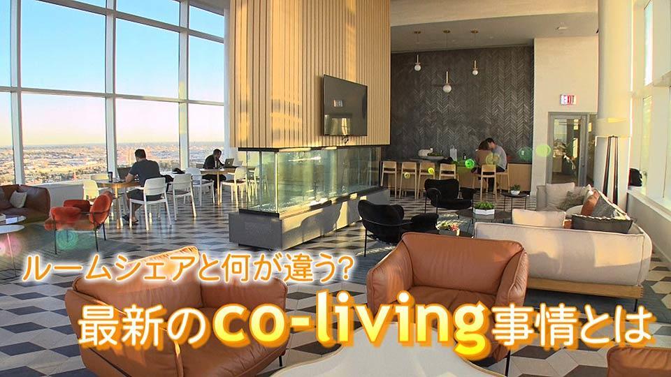 ミレニアル世代に人気、最新のco-living事情