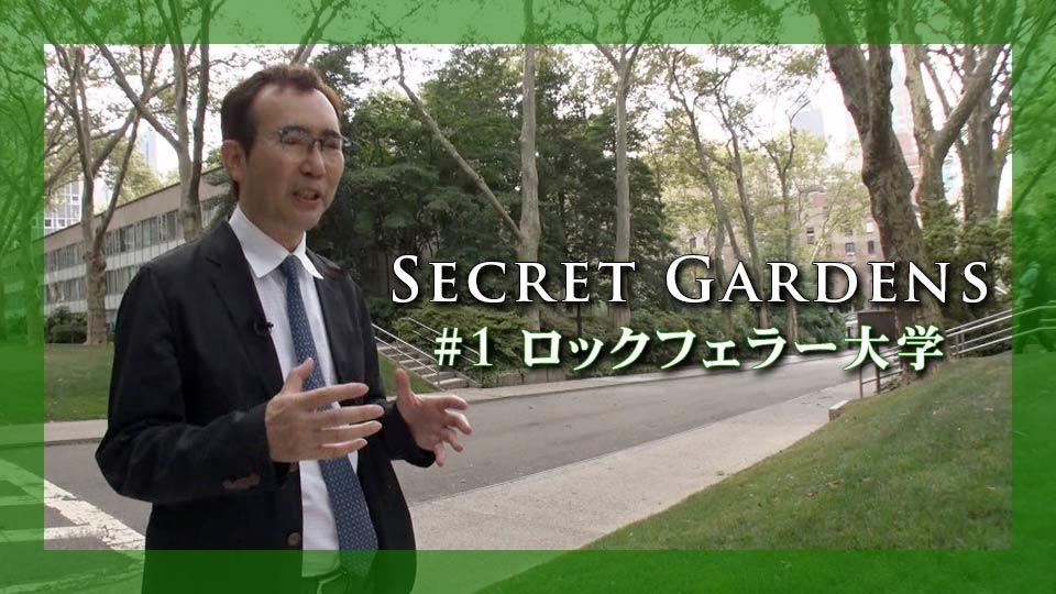 Today's Catch! 夏の特別企画  福岡伸一さんの「Secret Gardens」