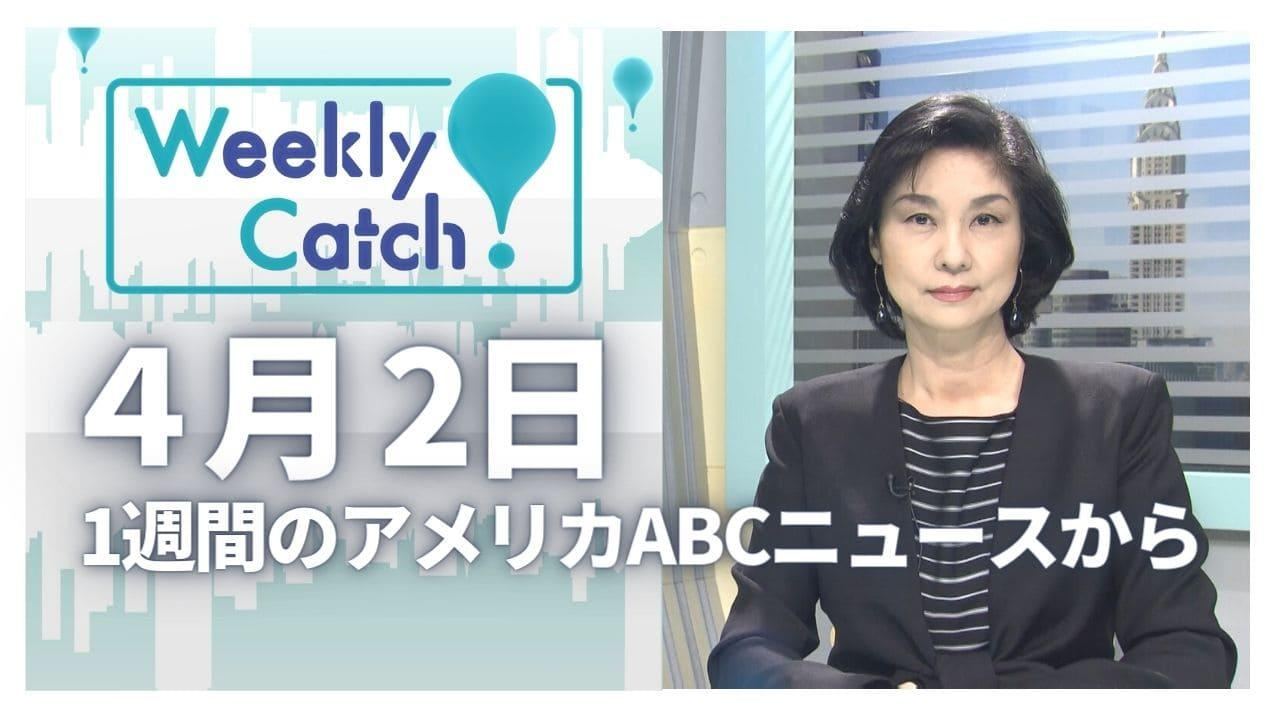 4月2日 Weekly Catch!