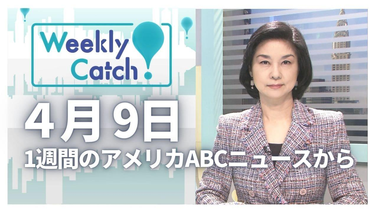 4月9日 Weekly Catch!
