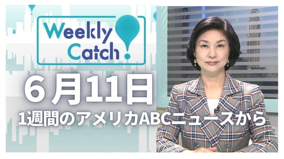 6月11日 Weekly Catch!