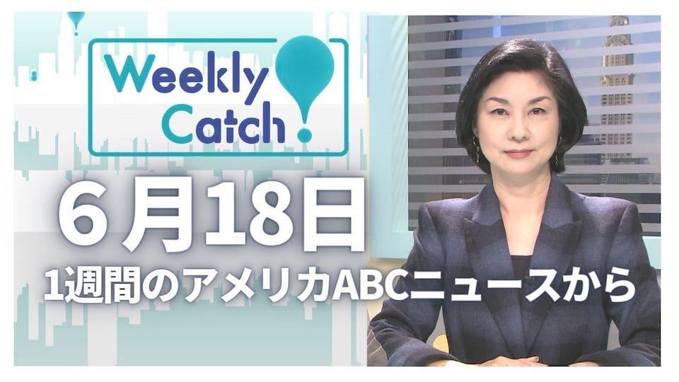 6月18日 Weekly Catch!