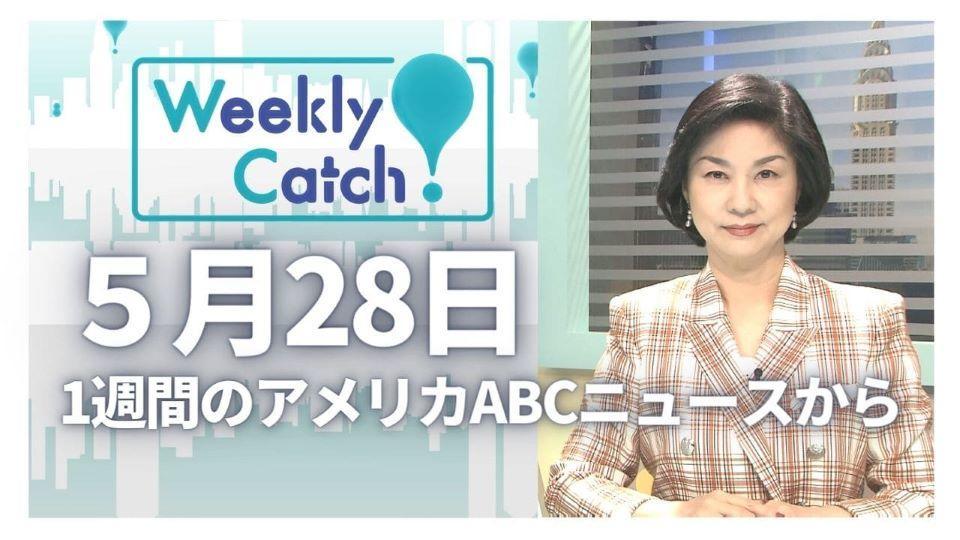 5月28日 Weekly Catch!