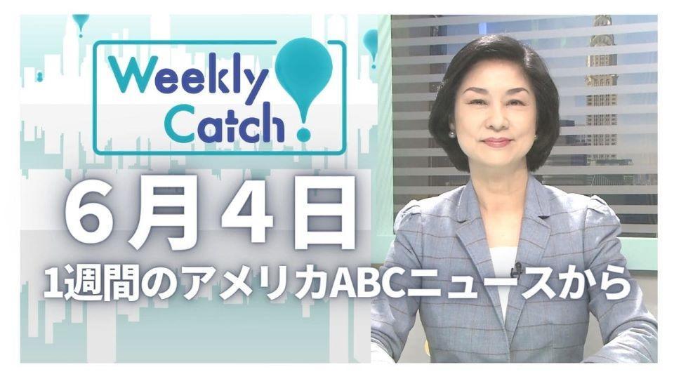 6月4日 Weekly Catch!