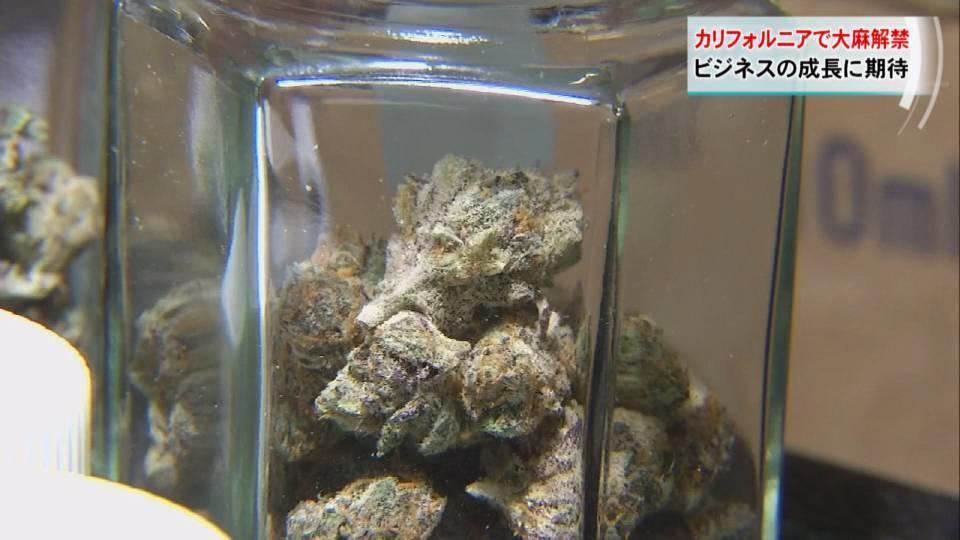 カリフォルニア州で大麻解禁 70億ドルビジネスに?