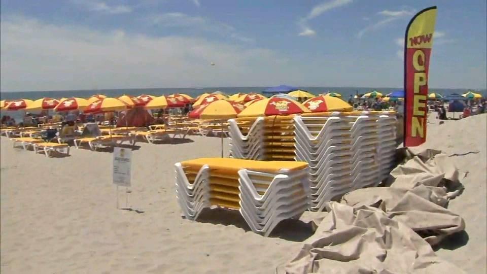 黄色いパラソルがビーチを占領?