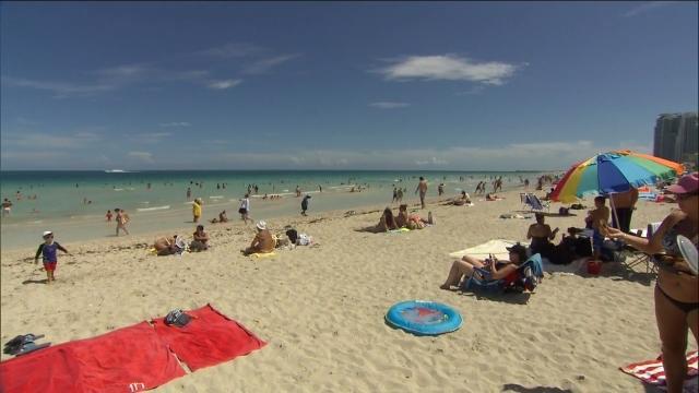 ジカ熱国内感染 マイアミビーチに渡航注意勧告