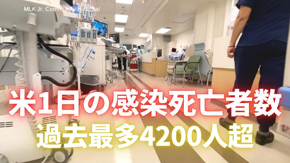 1日の死亡者数4200人超で最多 新型コロナウイルス感染