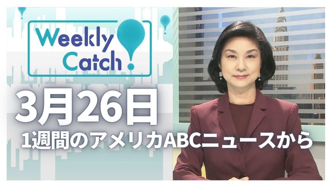 3月26日 Weekly Catch!