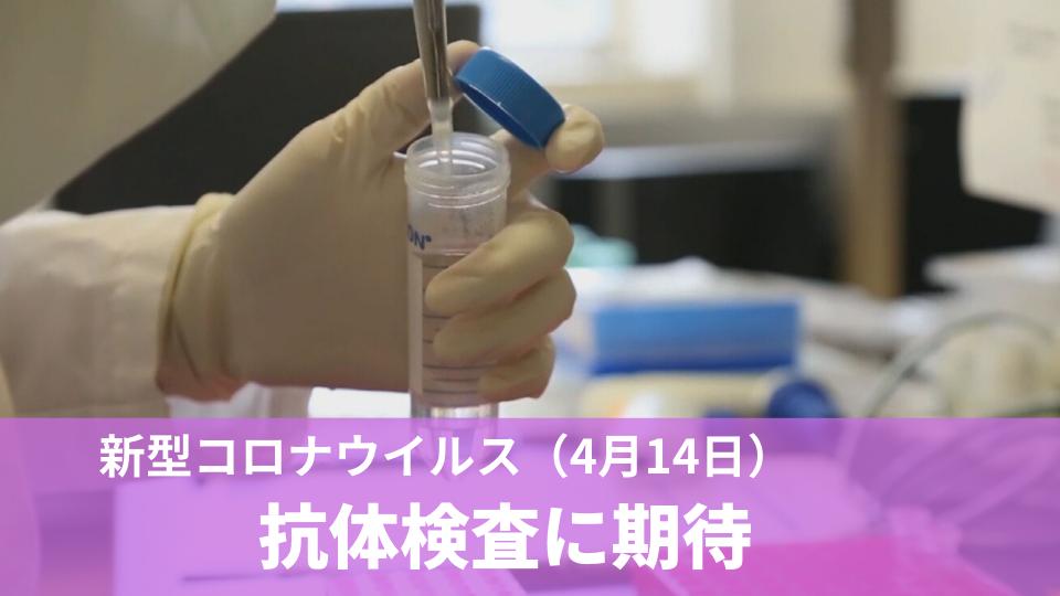 4月14日 新型コロナウイルス 抗体検査に期待