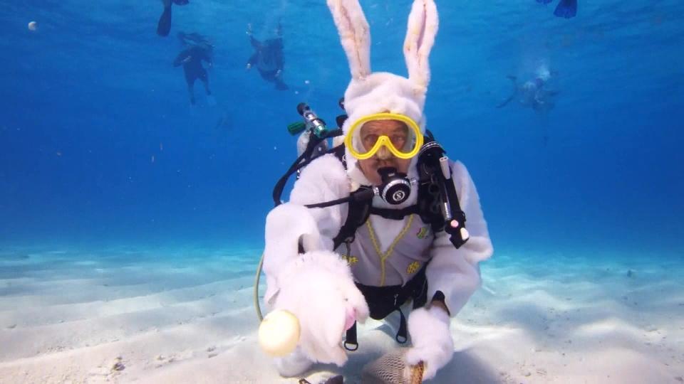海中のイースターバニーちゃん / Easter bunny underwater