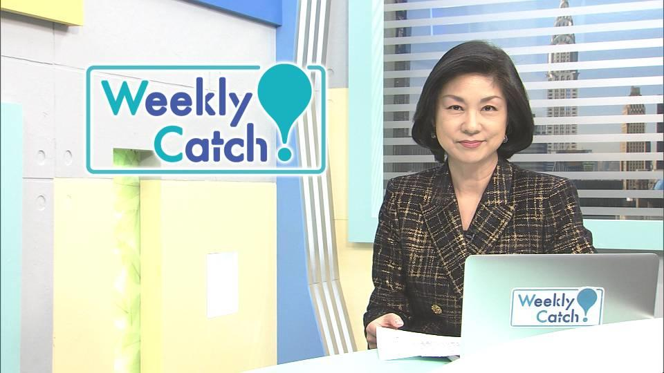 11月7日 Weekly Catch!