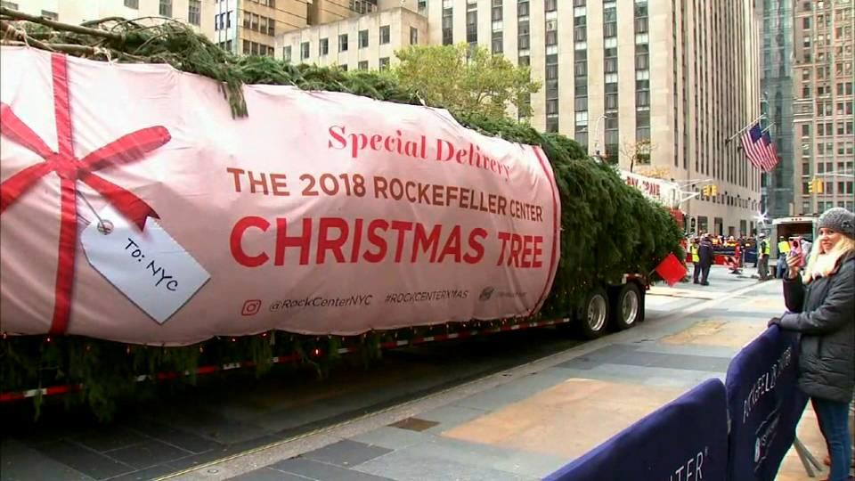 NYに恒例のツリーお目見え / Rockefeller tree arrives
